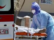 فلسطين تسجل أعداد إصابات مرتفعة بفيروس كورونا
