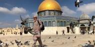 وزير الأوقاف الأردني يحذر من اقتحامات المتطرفين باحات الأقصى