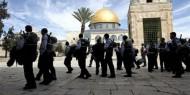 الاحتلال يعتزم بناء المعابد والكنس في المستوطنات لتعزيز مكانتها