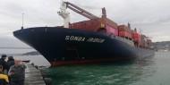اصطدام سفينة شحن روسية مع سفينة تركية في مضيق البوسفور