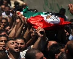 """""""مركز حقوقي"""" يطالب بالتدخل العاجل لوقف جرائم الاحتلال ضد الفلسطينيين"""